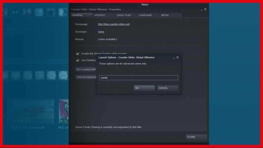 CS:GO Başlatma Seçenekleri 2019