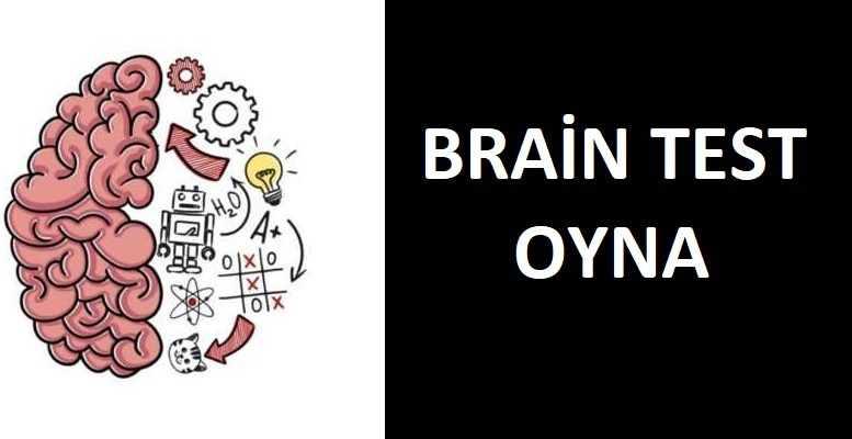 Brain Test Oyunu Oyna (Türkçe)