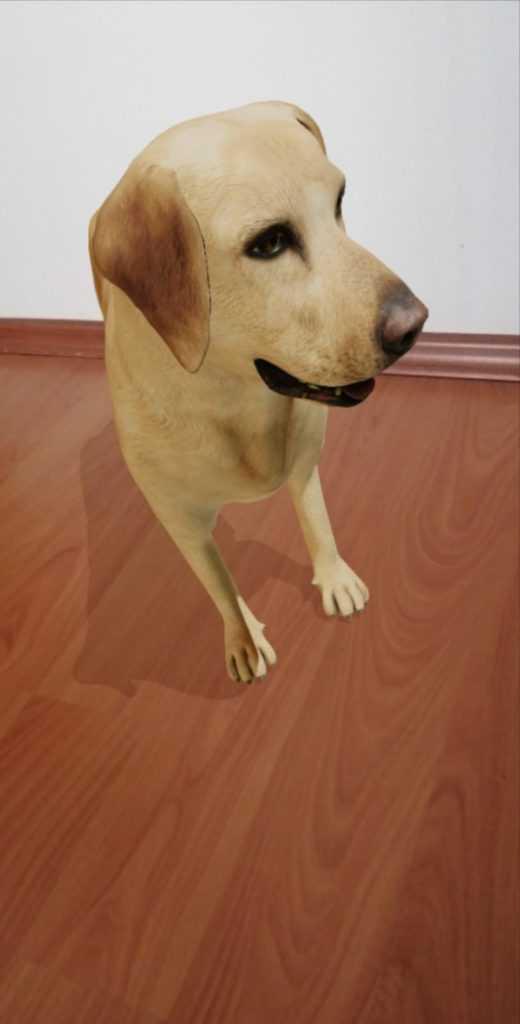 Köpek Viev in 3D