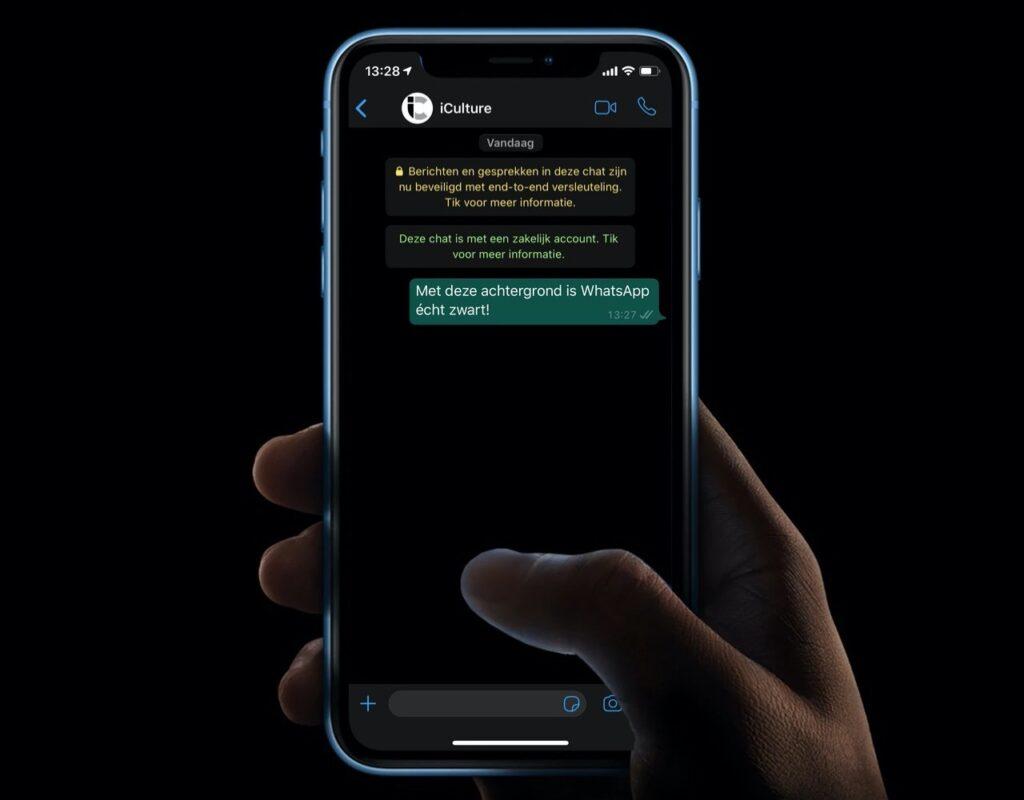 WhatsApp Çevrimiçi Gizleme Uygulaması