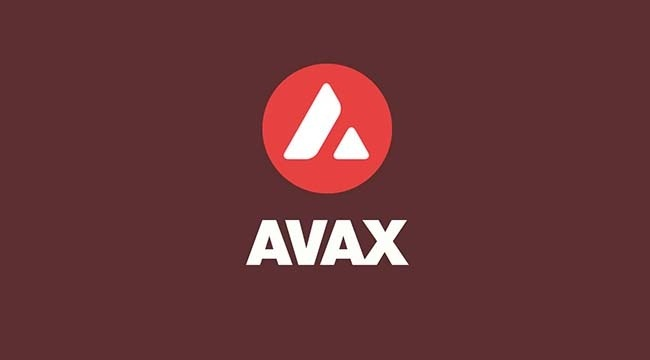 Avax Coin Yorum